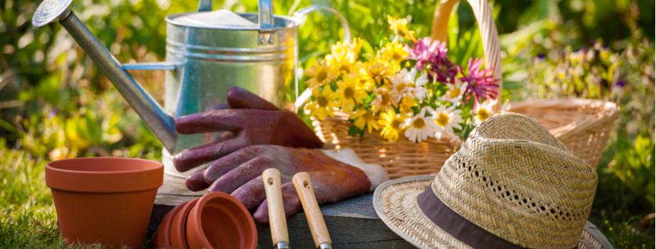 Tuinhandschoenen en meer kopen bij Almeerplant